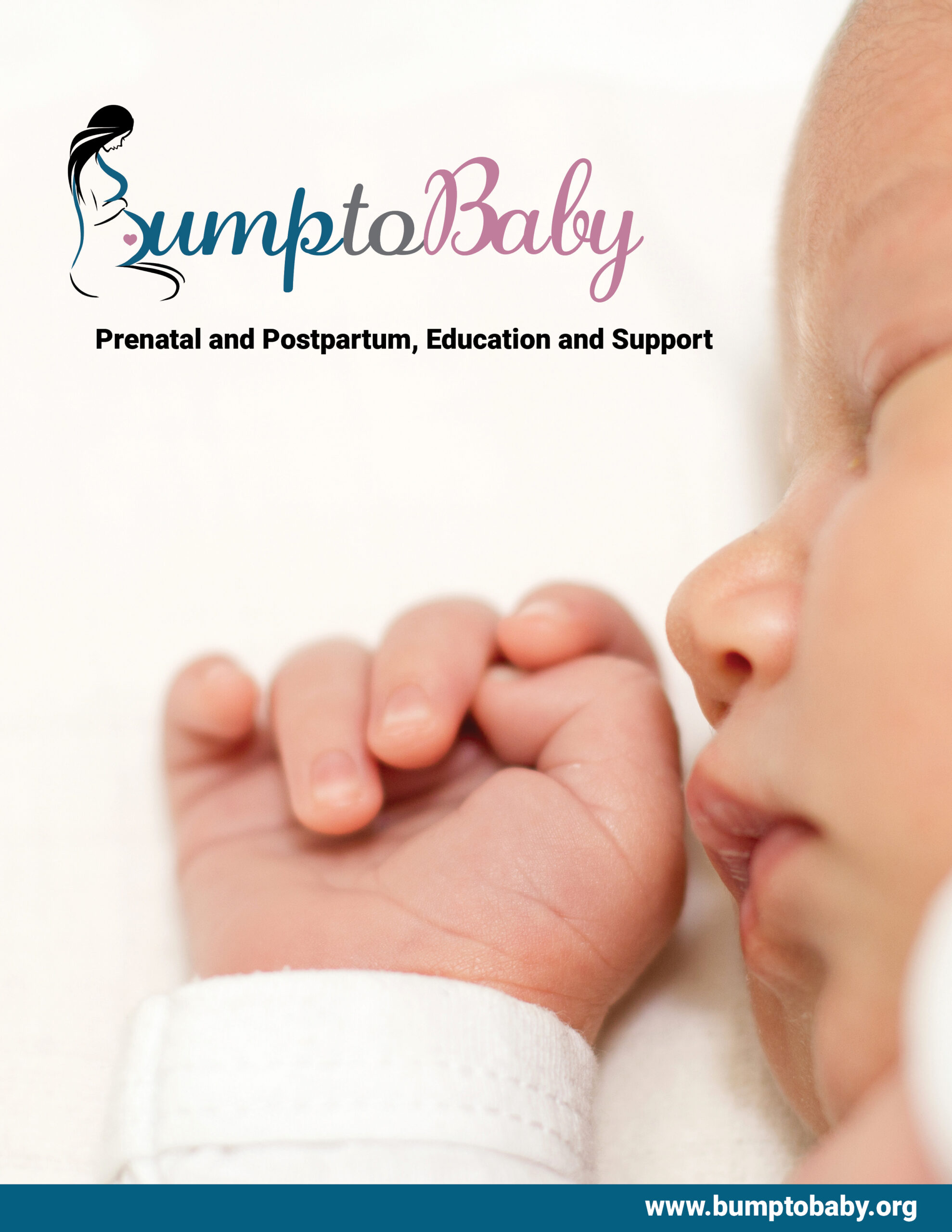 Bump to Baby Cover